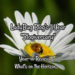 LBB Blog is 1