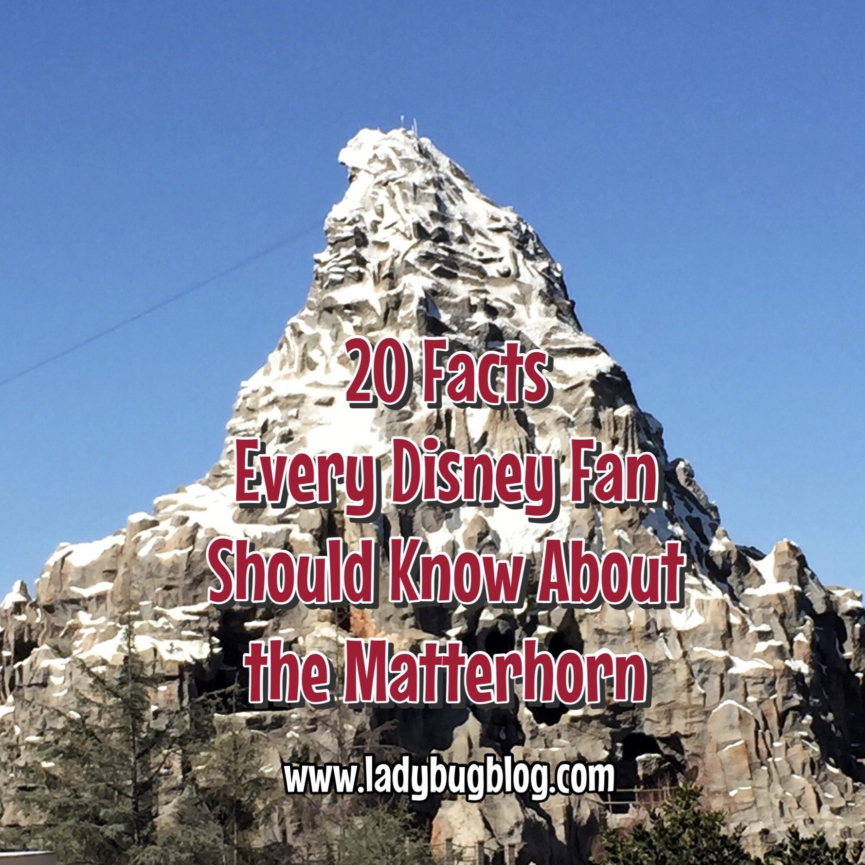 20 Facts Every Disney Fan Should Know About The Matterhorn Ladybug
